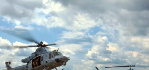 Снайпер Морской пехоты США во время учения «Черный дротик 2015» сбил из винтовки беспилотный летательный аппарат. Как сообщает Breaking Defense, при этом он находился в летящем многоцелевом вертолете UH-1Y Huey. Это первый в истории задокументированный случай, когда находящийся в воздухе снайпер смо