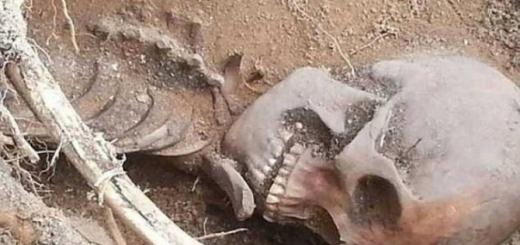 Школьник из Юты нашел во дворе останки древнего индейца