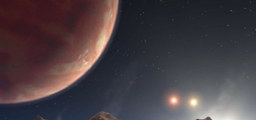 Разумные инопланетяне скорее крупные, чeм мелкие