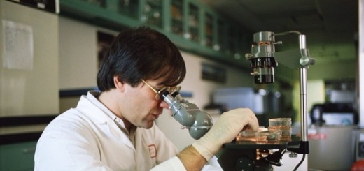 Ученые создали новый метаматериал, превращающий тепло в электричество