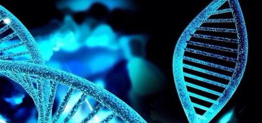 Ученые сделали еще один шаг на пути к использованию CRISPR для лечения генных болезней