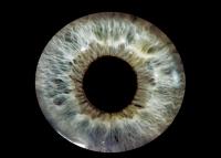 Компания Google получила патент на жидкую электронную линзу. Устанавливать ее планируется уколом в глаз.