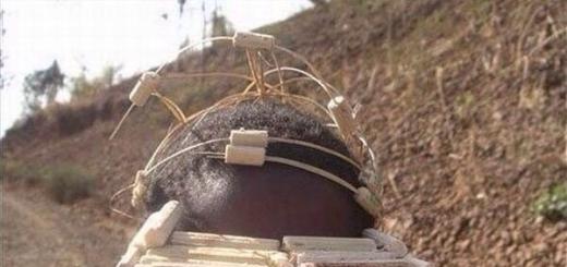 Во времена Второй Мировой войны на некоторых островах Меланезии (совокупность тихоокеанских островных групп) зародились интересные культы — так называемые «культы карго» (cargo — груз, перевозимый на судне), которые появились у местных аборигенов в результате контакта с цивилизованными пришельцами,