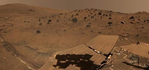 Ученые хотят заселить Марс подземными насекомыми