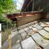 Японцы создали кошачий аналог Google Street View