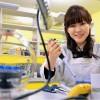 Японский ученый сфабриковал открытие года?
