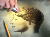 Длительный стресс приводит к потере памяти