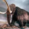 Почему мамонты вымерли?