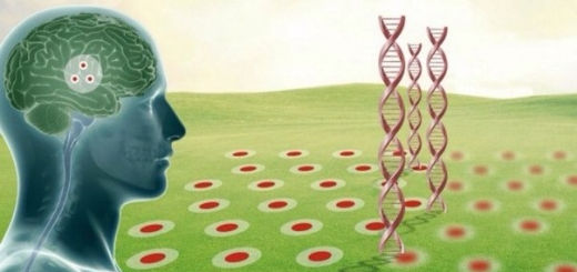 Спрогнозировать появление болезни Альцгеймера заранее можно с помощью виртуальной реальности