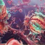 ВИЧ впервые удалось победить экспериментальным путем