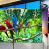 LG представит 55-дюймовый скручиваемый телевизор в 2016