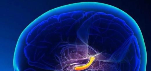 Изучена реакция мозга на телепортацию