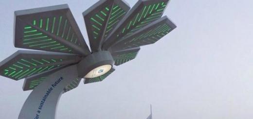 Пальмы в Дубае будут раздавать Wi-Fi