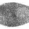 Американские антропологи заявили, что по отпечатку пальца можно определить, имелись ли у человека в роду представители европеоидной или негроидной расы. Результаты проведенного исследования опубликованы в официальном журнале Американской ассоциации физической антропологии, краткое изложение приводит