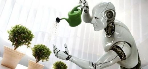 Создан робот-дворецкий для умного дома