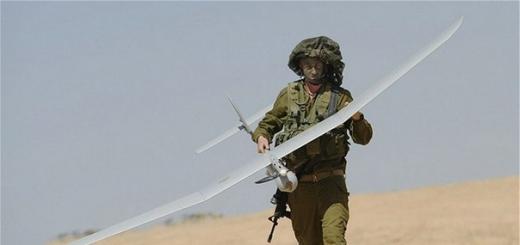 DARPA намерено научить дронов охотиться в стаях, подобно волкам