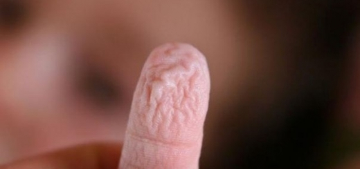 Вот почему наши пальцы рук и ног становятся морщинистыми от долгого пребывания в воде