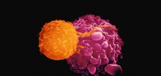 27 октября 2015 года в США генетически модифицированный вирус герпеса Talimogene laherparepvec (T-VEC) был одобрен для лечения последних стадий меланомы — смертоносного рака кожи. Четырьмя днями ранее соответствующие регулирующие органы предложили одобрить подобный вид лечения и в Европе.