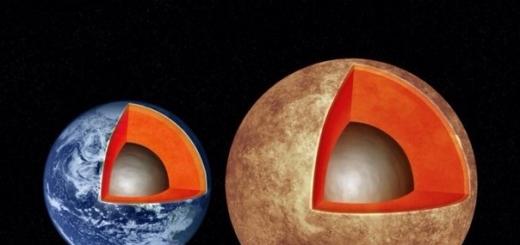 Землеподобные планеты имеют схожее с Землёй внутреннее строение