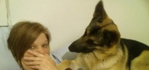 За 100 тысяч долларов южнокорейская биотехнологическая фирма клонирует вашу собаку