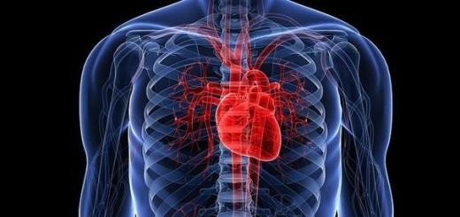Ученые выяснили, как можно контролировать работу клеток сердца при помощи лазера