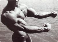 Как ускорить мышечный рост?