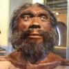 Исследователи смогли расшифровать древнейшую ДНК человека: источником материала стали окаменелости, чей возраст равен 300-400 тыс. лет. Об открытии стало известно от немецких ученых.